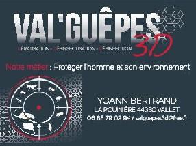 Val'Guêpes3D Vallet