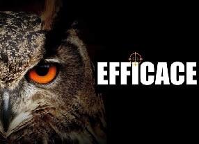 logo Sarl EFFICACE